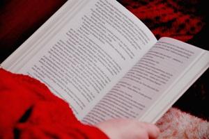Skaito knygą