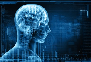 Smegenys