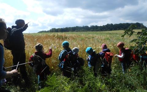 Vaikams pamoka prie javų lauko Vokietijoje