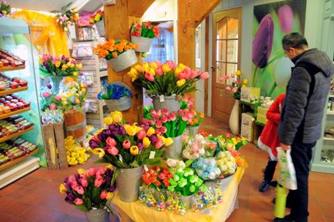 Spalvotos gėlės