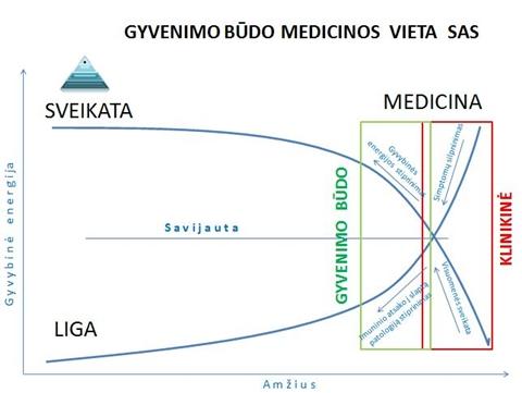 Schema Nr. 1. Gyvenimo būdo medicinos vieta sveikatos apsaugos sistemoje
