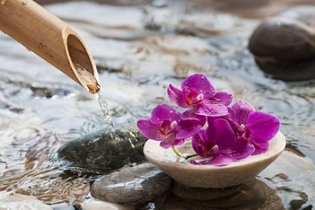 Bėgantis vanduo ir gėlės