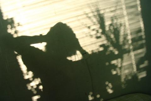 Moters šešėlis