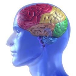kas sukelia smegenų hipertenziją. antrinė hipertenzija pagal mcb
