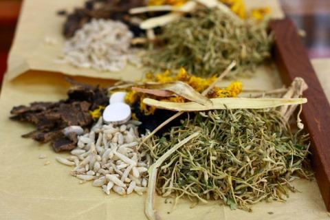 Kiniškos žolelės. Naturehacks.com nuotr.