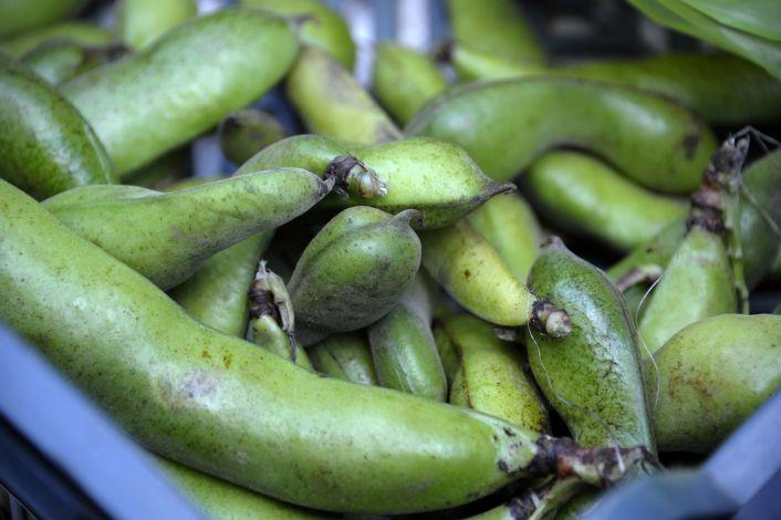 vegetarizmas ir hipertenzija hipertenzija, kokia yra rizikos grupė