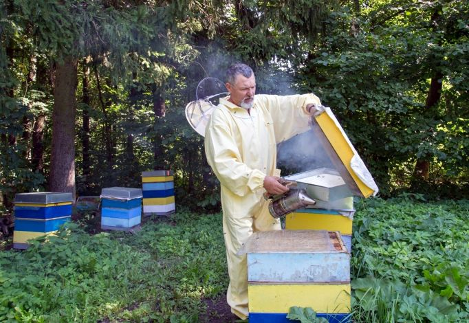 mirusių bičių hipertenzija gydymas)