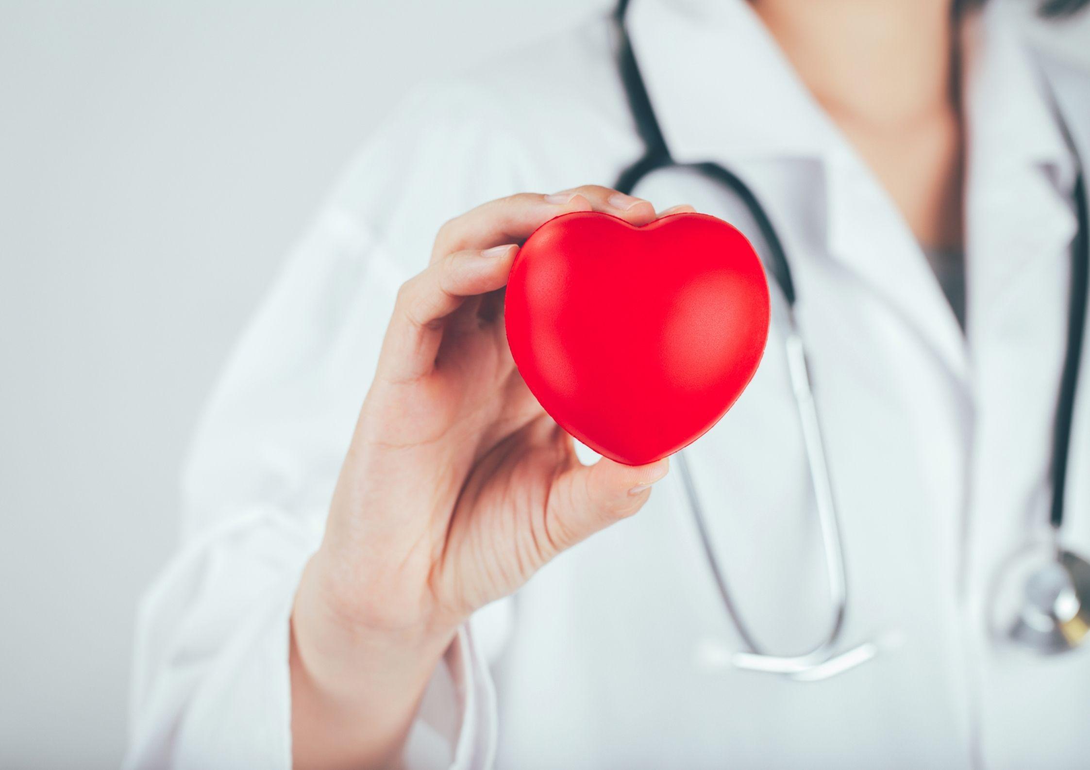 Rankoje laikoma širdis