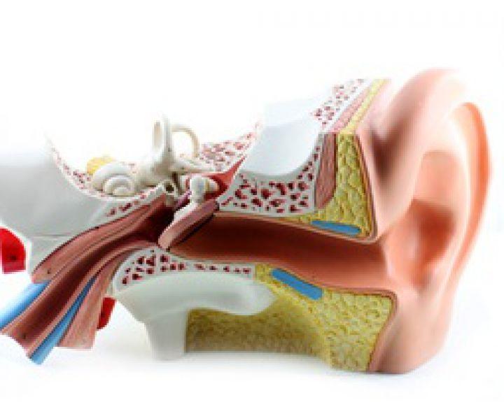 hipertenzija ir ausų skausmas
