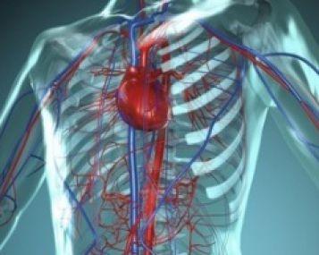 spaudimas sirdies plote neįgaliųjų grupė dėl hipertenzijos