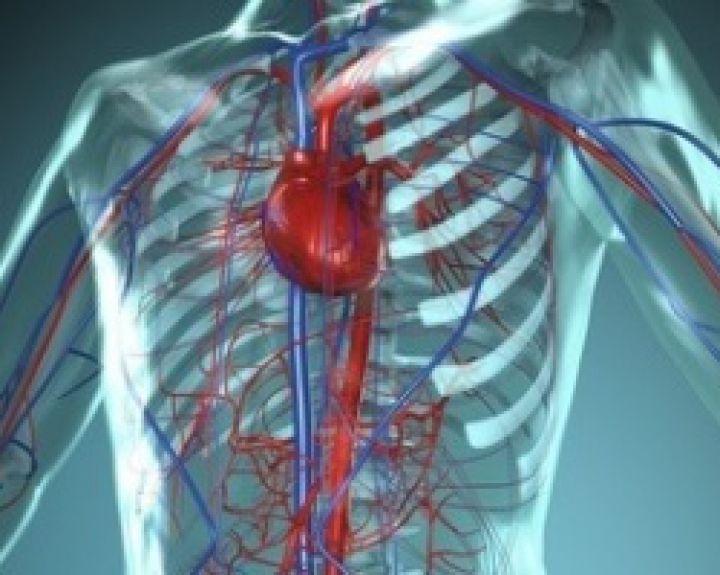 Skausmas šonkauliuose - priežastis, diagnozė, patarimas, mokymas ir gydymas.
