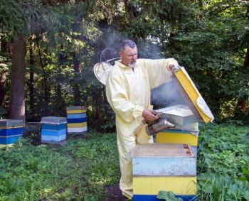 kuris vartojo bičių pienelį nuo hipertenzijos